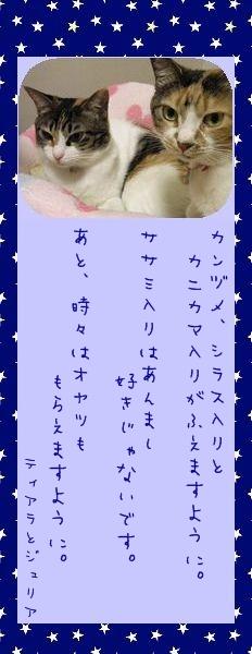 七夕祭り 2010 02 ティアラさんとジュリアさんのお願い事