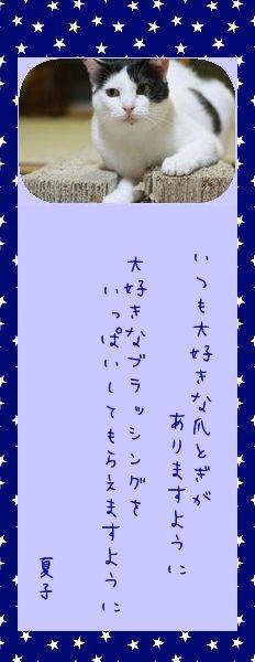 七夕祭り 2010 06 夏子さんのお願い事