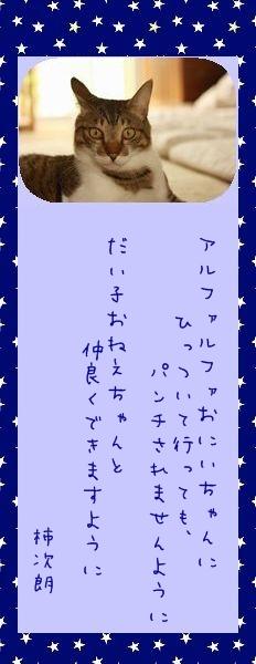 七夕祭り 2010 08 柿次朗さんのお願い事