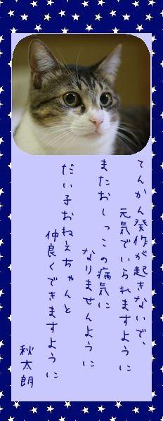七夕祭り 2010 09 秋太朗さんのお願い事