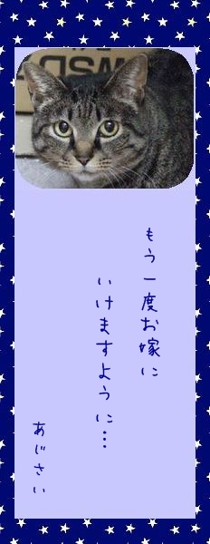 七夕祭り 2010 10 あじさいさんのお願い事