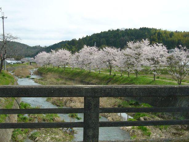 sasayama.jpg