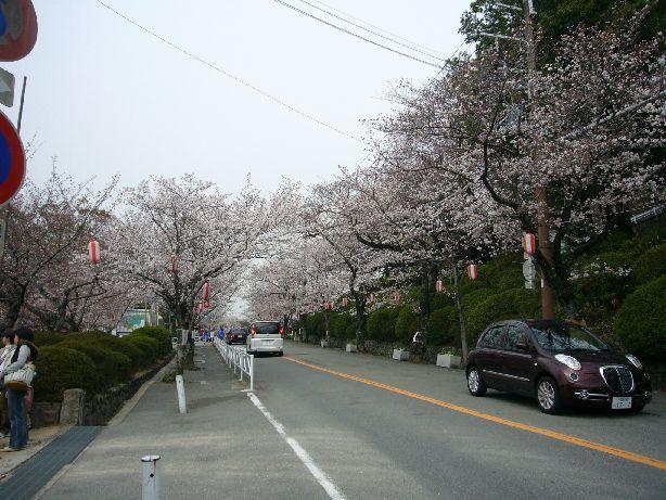 satukiyama.jpg