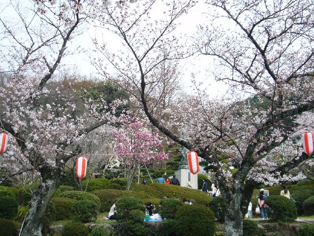 satukiyama6.jpg
