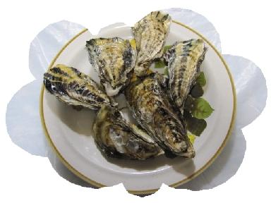 成田坂越牡蠣