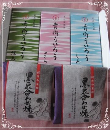 IMG_1393-crop_20110116212843.jpg