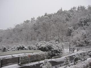 yuki1_20110211214215.jpg