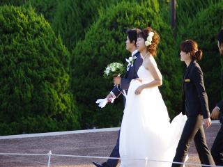 偶然やってた結婚式