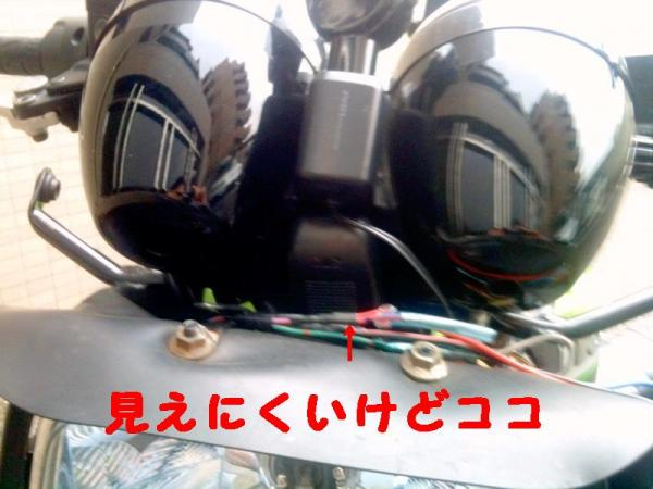 31231212455_convert_20110115171505.jpg