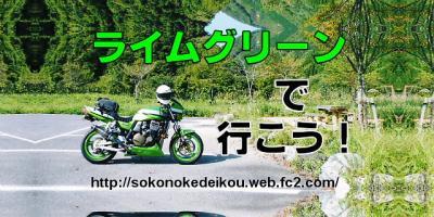 convert_20110122182857.jpg