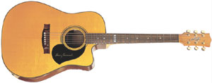Maton_TE1_acoustic_th.jpg