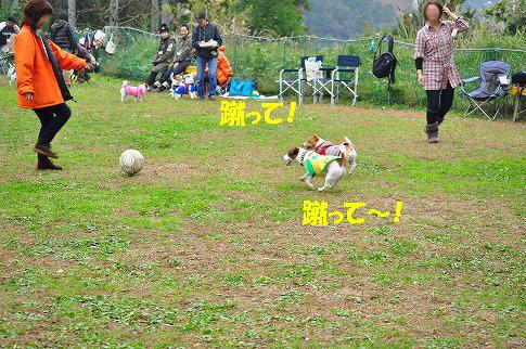 101117-18s_20101118131900.jpg