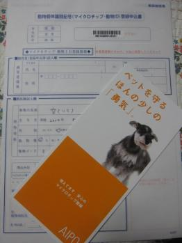 IMG_9327-201103.jpg