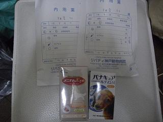 CIMG0340_20100905201815.jpg