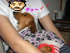 CIMG0443_20100409181338.jpg