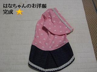 CIMG0504_20101008201848.jpg