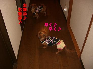 CIMG0589_20100422200725.jpg