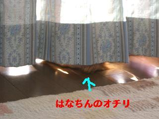 CIMG0850_20100508203810.jpg