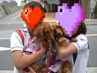 CIMG1111_20100602155328.jpg