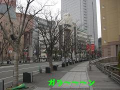 CIMG1178_20100209230814.jpg