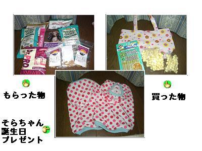 CIMG1238_20100608201744.jpg