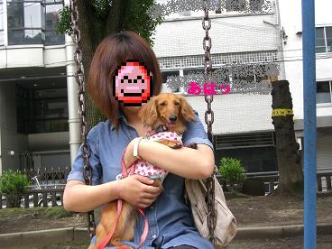 CIMG1473_20100621214541.jpg