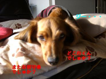 CIMG9935_20100312185916.jpg