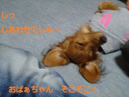 DSC00814.jpg