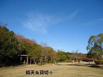 DSC00928.jpg