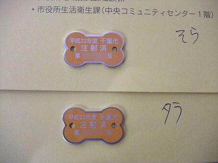 2010_0411_10.jpg
