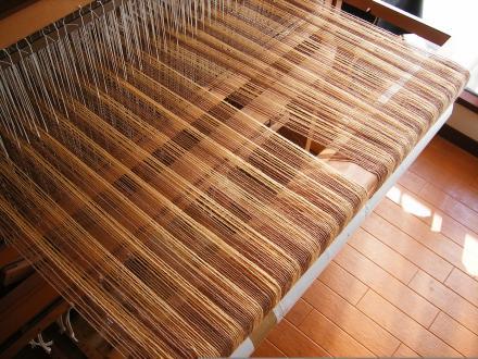 枇杷染めの経糸