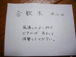 010_convert_20091107184942.jpg