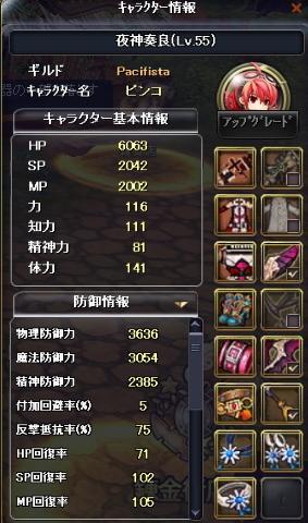 ピンコ55ステ(防御)