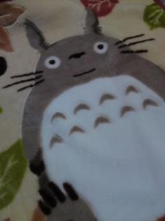 トトロ毛布