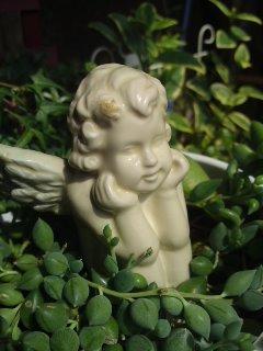 おはよう天使