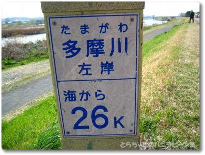 26キロ地点