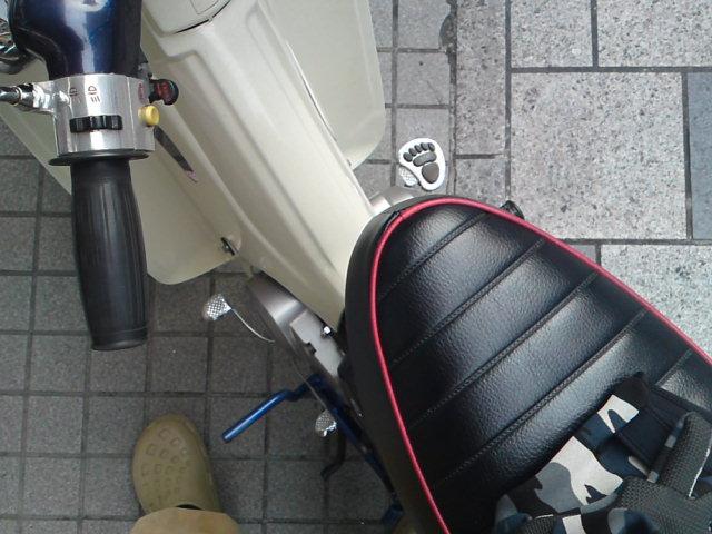 SN3J0500.jpg