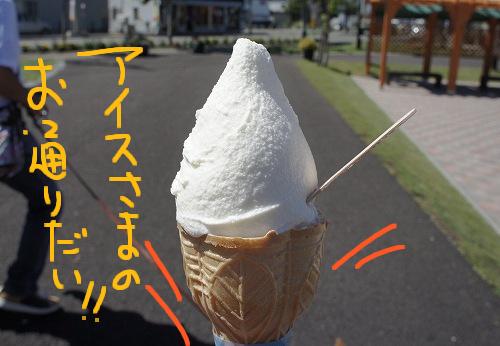 夏はアイスだべさ!