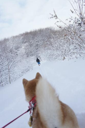 歩くスキーのおじさん