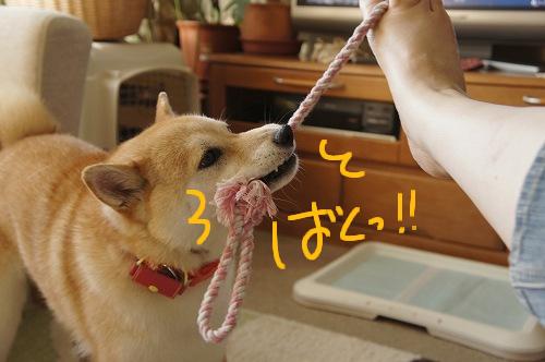 お!食いついた!!