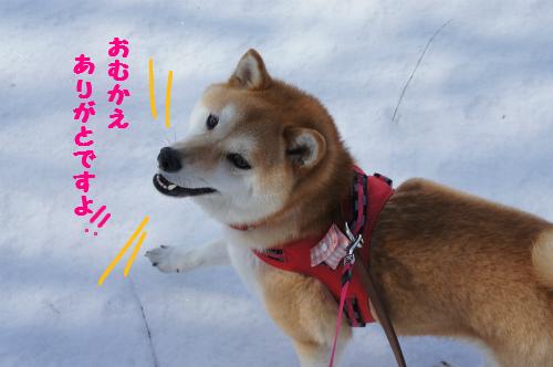 お迎え参上!