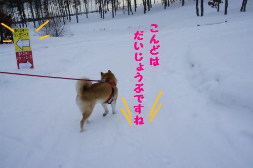 歩くスキーコース