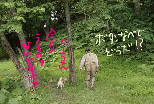 マタギのオヤジと猟犬の柴犬
