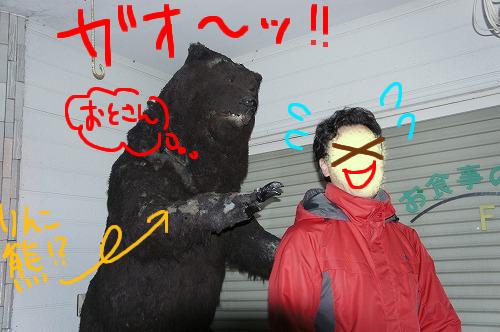 本物とりん熊はどっちが強い!?