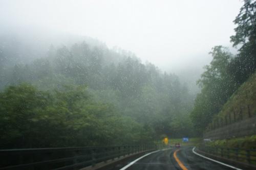 霧のクネクネ道。