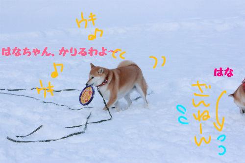 ゆきちゃんの勝ち!