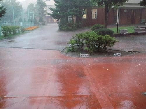 ゲリラ豪雨!
