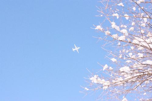 快晴の真冬日