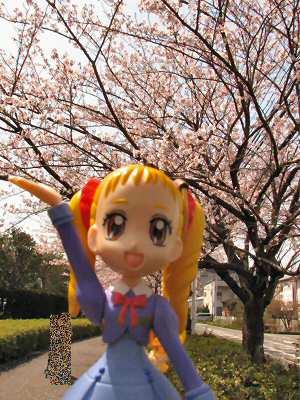 お花見2010 001