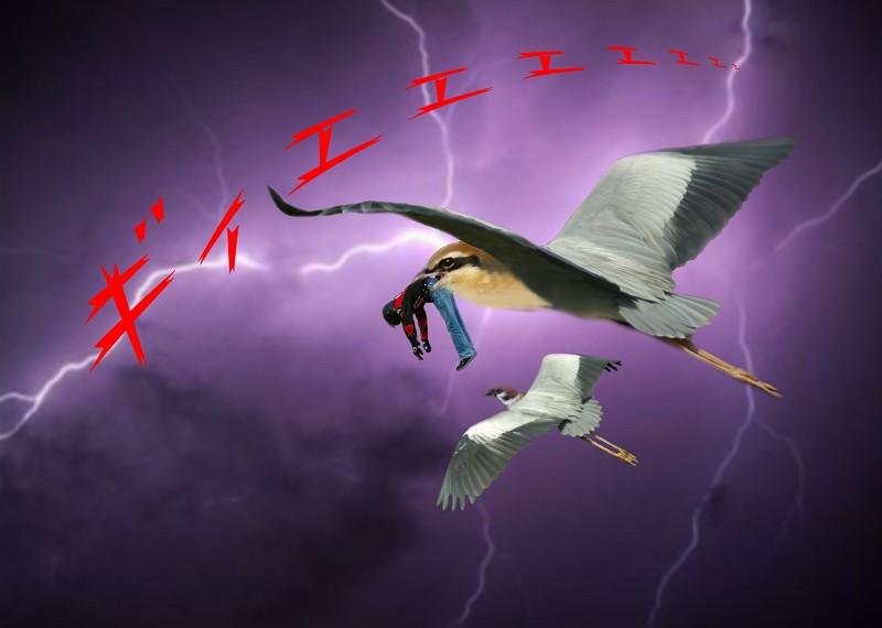 大怪鳥モズサギー